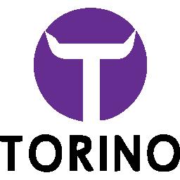 TorinoChannel.it