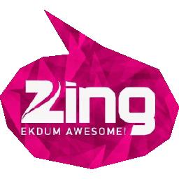 Zing.nl