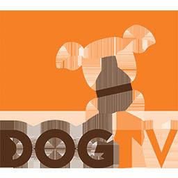 DogTV.pt
