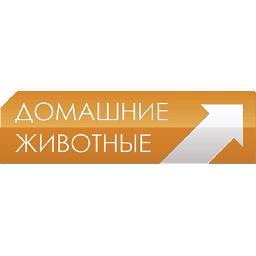 Domashniyezhivotnye.ru
